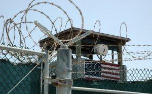 Американца приговорили к 16 годам тюрьмы за массовое убийство кошек