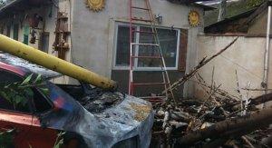 В Крыму из-за упавшего дерева порвало провода, повредило газопровод – загорелся автомобиль